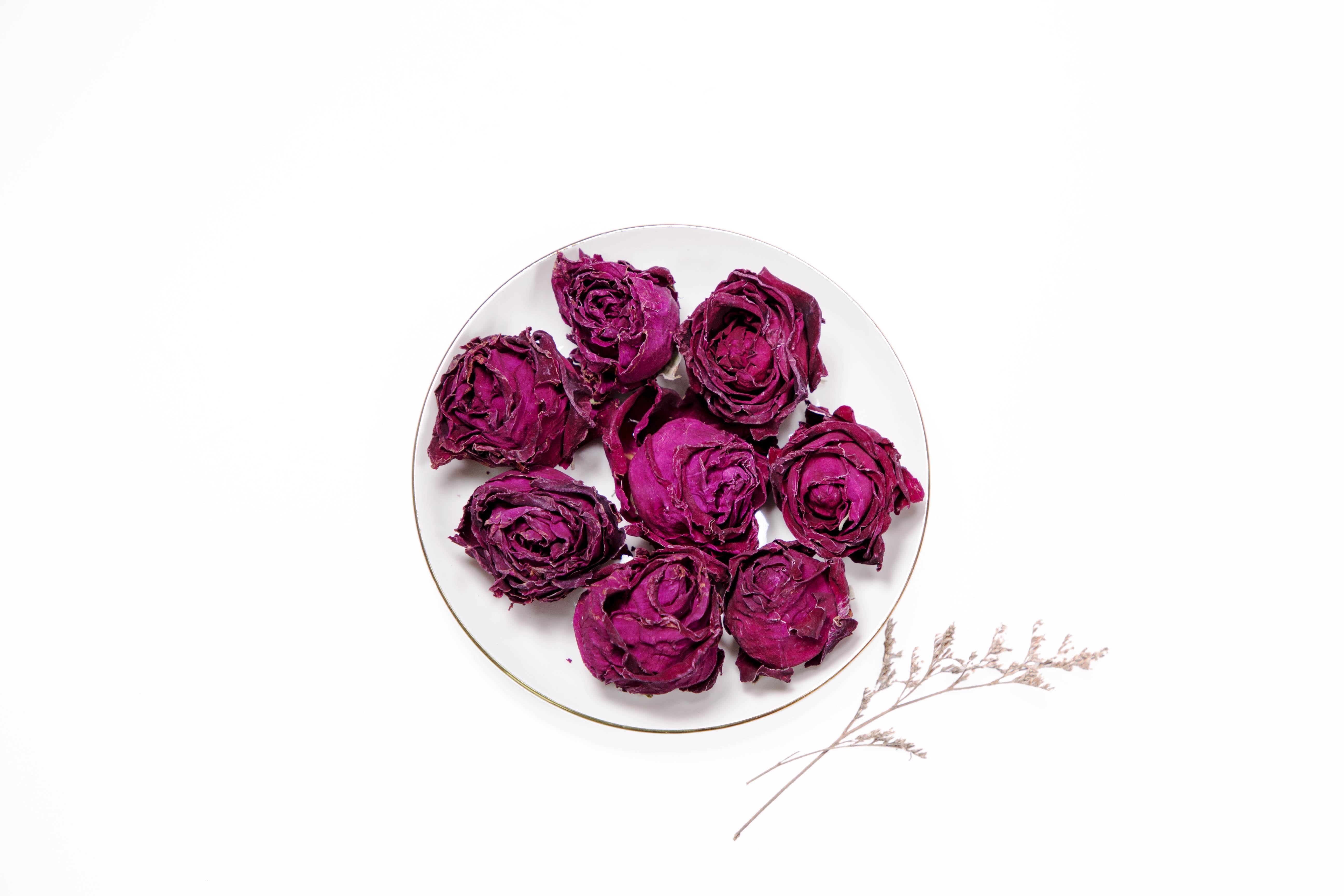 重瓣红玫瑰花朵 FY-MD105
